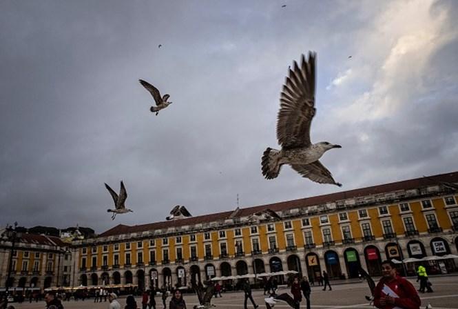 Estranho alerta de Londres: ataques terroristas em Portugal