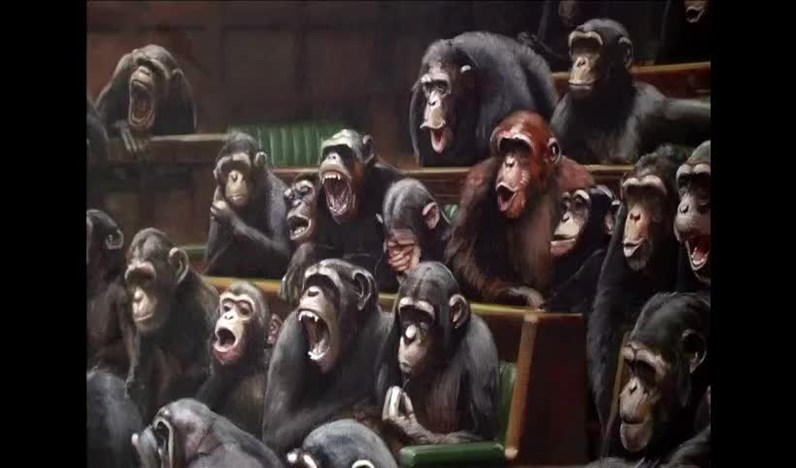 chimpanzes do banksy